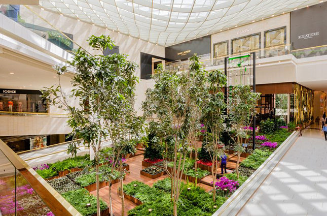 The airy, bright and leafy atrium of Iguatemi in Sao Paolo. Iguatemi Group Carlos Jereissati Filho pioneered and continues to pursue the introduction of expansive green spaces inside and outside the Iguatemi retail developments